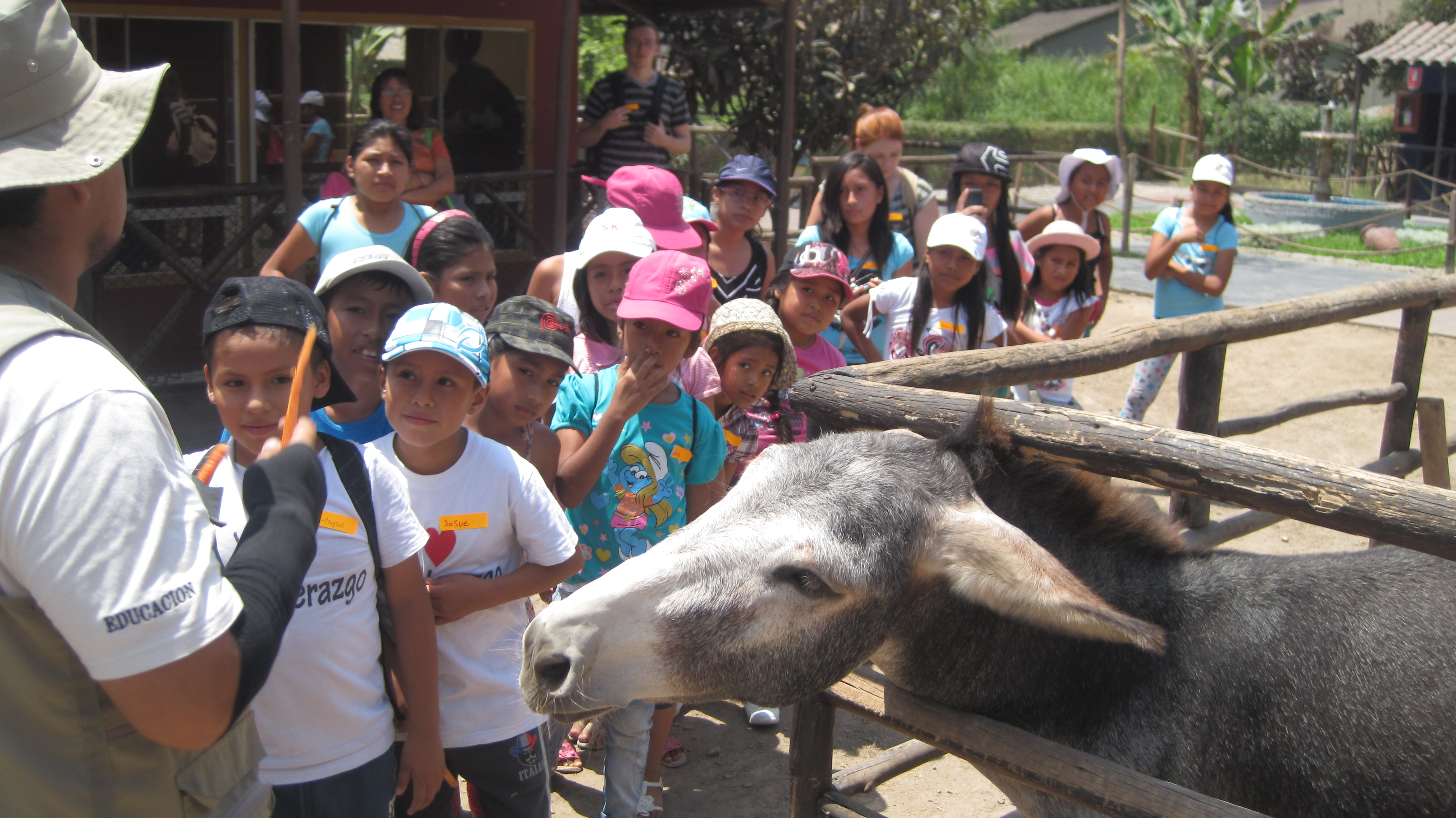 a trip to the zoo Are you interested in bringing a school group to the zoo for a field trip you can  choose among a variety of options to fit your educational needs once you have.
